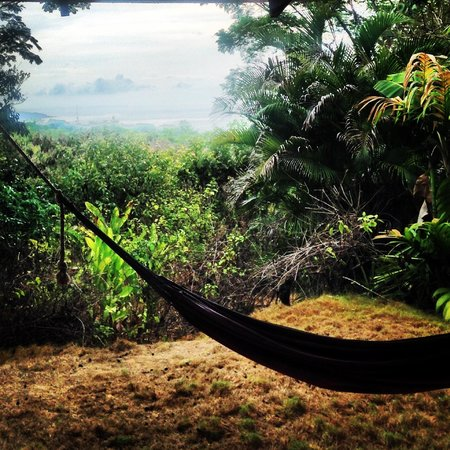 Agua Vista: Hammock and ocean view