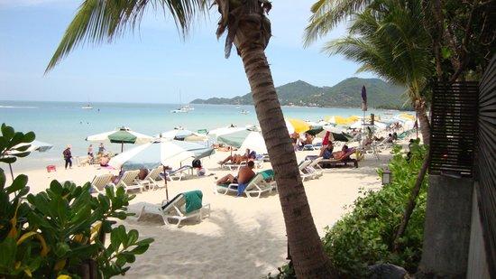 Banana Fan Sea Resort: July 2012