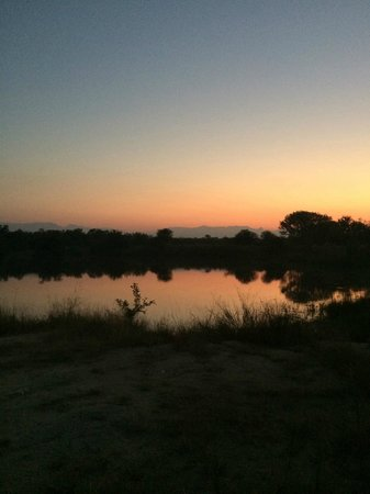 Shiduli Private Game Lodge : Beautiful scenery
