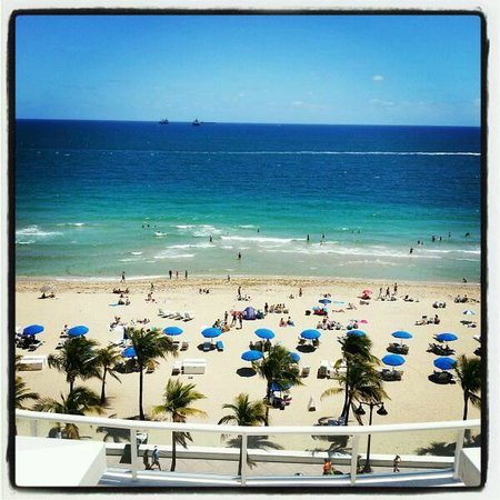 The Ritz-Carlton, Fort Lauderdale: View from the pool