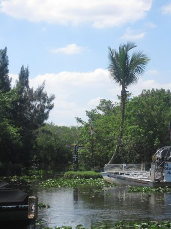 Miami Tour Company: Everglades