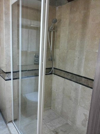 Novotel Solo: the shower area