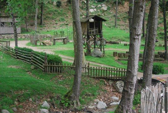 El Moli de Can Aulet: casa del árbol