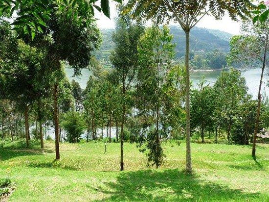 Jajama Panorama: Sloping garden