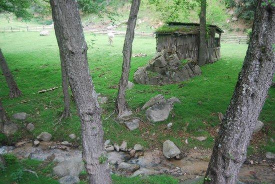 El Moli de Can Aulet: Vistas desde la casa