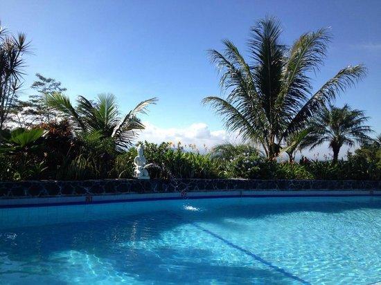 Villa Sumbing Indah: Vue de la piscine