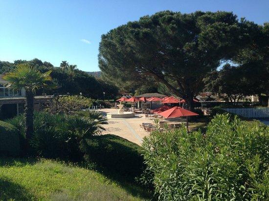 Hotel Club Marina Viva: terraza del bar y jardines