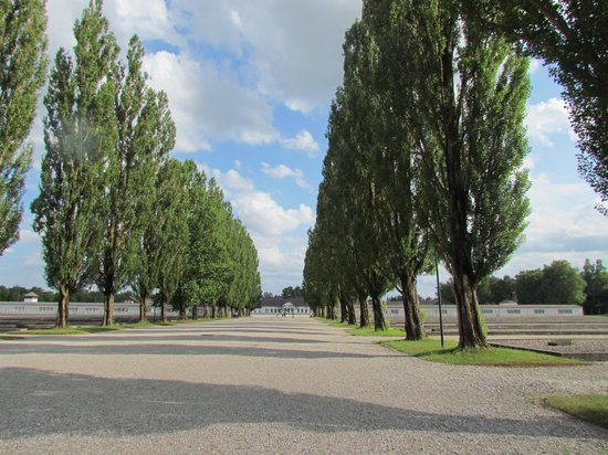 KZ-Gedenkstätte Dachau: Trees standing in front of where the barracks used to be