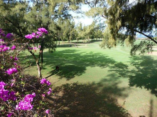 Green Garden Resort & Suites: Golf Course