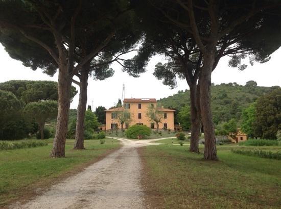 Villa Boldrini : Ingresso