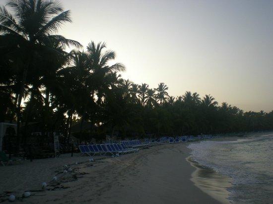 Viva Wyndham Dominicus Beach : View of Beachfront at Sunrise