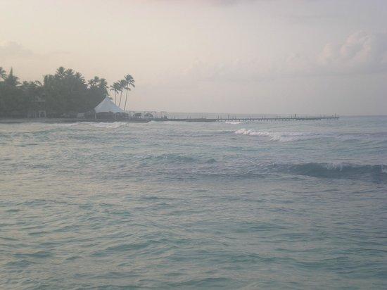 Viva Wyndham Dominicus Beach : View of the dock