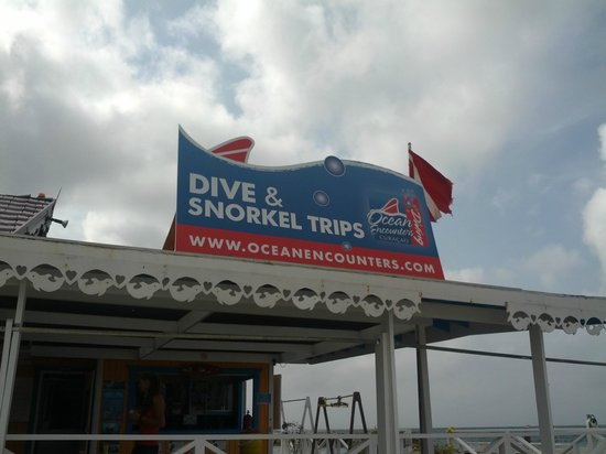 Ocean Encounters Diving : Hotel Dive Shop