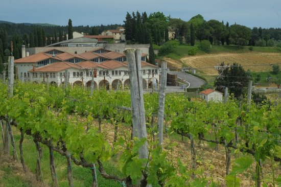 Discovery Chianti: Wn av vingårdarna i Chianti