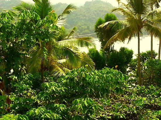 Grand Bahia Principe Cayacoa: sun deck over the sea