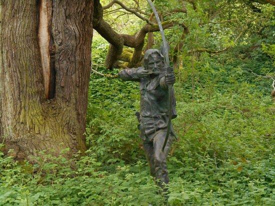 Sherwood Forest: Robin Hood