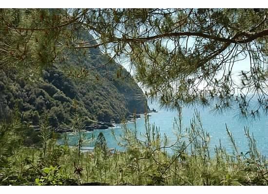 Giardini Poseidon Terme : view of the bay of Citara