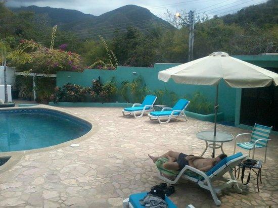 Posada Las Garcia : piscina con paesaggio