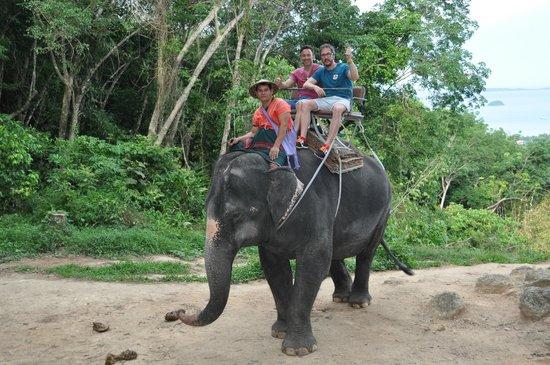 Siam Safari: Paseo en elefante