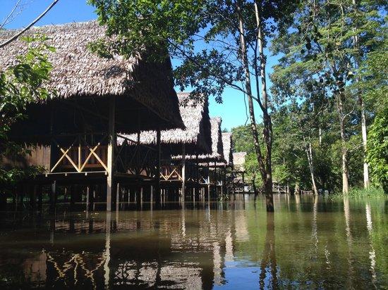 Muyuna Amazon Lodge : Lodges