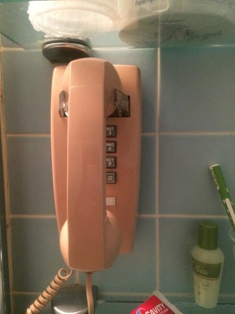Resorts Casino Hotel: Phone in Bathroom