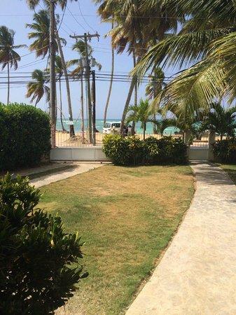Hotel Albachiara : Outside of apt
