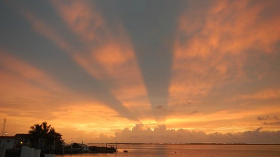 WildQuest: Last sunrise on Bimini