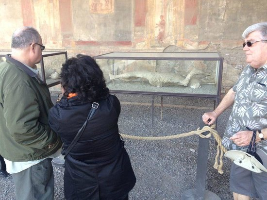 Lucia Pompeii Guide Tours: Lucia explains about the body casts and how the people would have reacted to the volcanic erupti