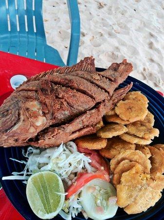 Sosúa, República Dominicana: Fresh Red Snapper from Restaurant Jorge