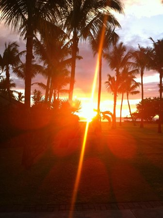 La Pirogue Resort & Spa : perfect sunset