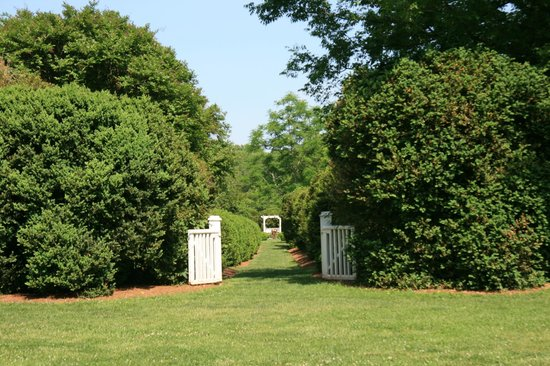 Tuckahoe Plantation: Formal walk