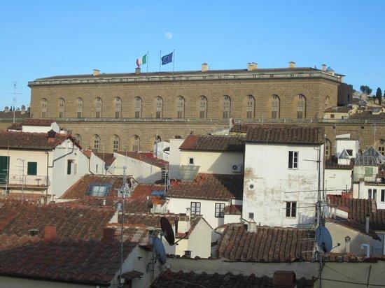 Hotel Palazzo Guadagni : Palazzo Pitti, plus grand palais d'Italie