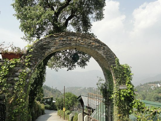 Soulitude in the Himalayas: entry