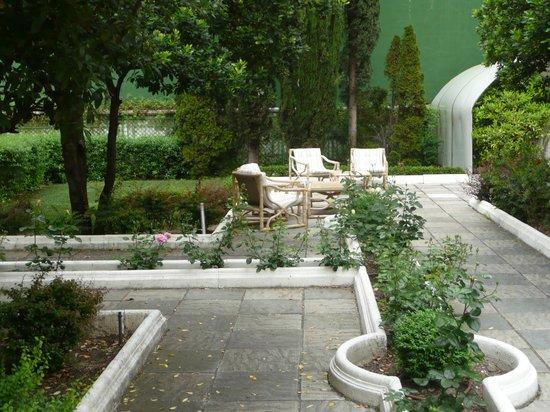 El Madrono: le fond du jardin