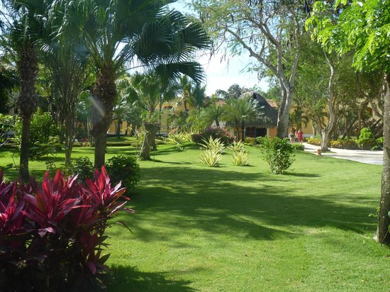 Iberostar Hacienda Dominicus: Jardins de l'hôtel