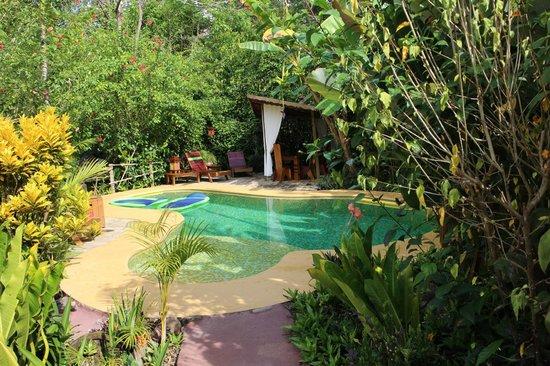Phidjie Lodge : la piscine et l'espace repas