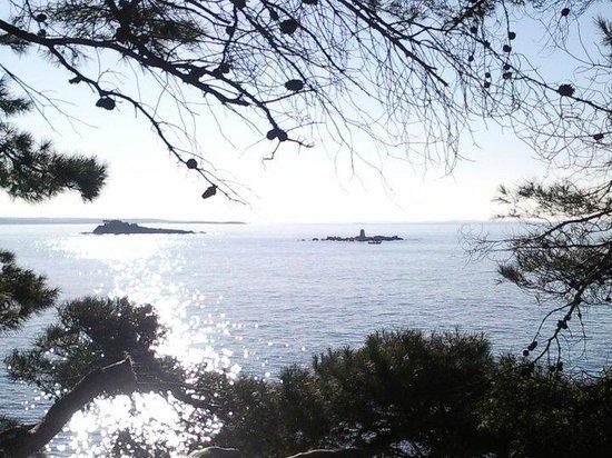 Villa Marija: Plaža Punta Corente