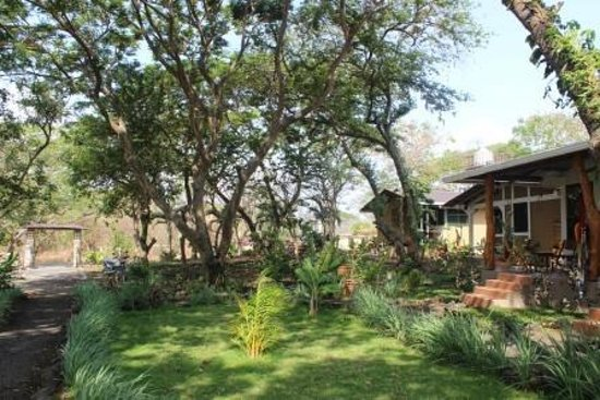 Xalli Ometepe Beach Hotel: Grounds