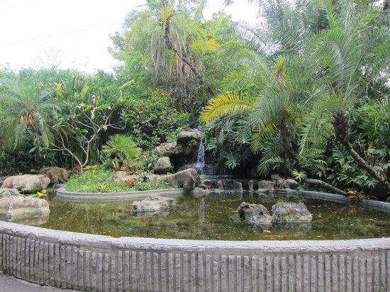 Flamingo Gardens: Flamingo Park - scene