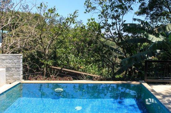 Aanavilasam Luxury Plantation House: Private pool