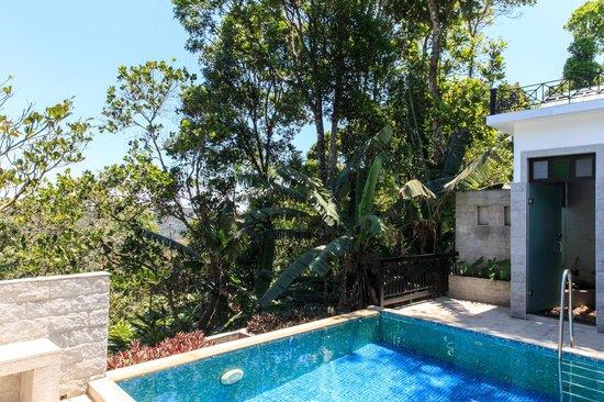 Aanavilasam Luxury Plantation House: Spice Farm