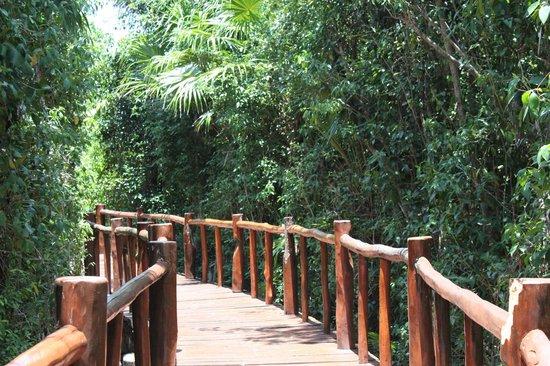 Grand Palladium Colonial Resort & Spa : Wooden pathway