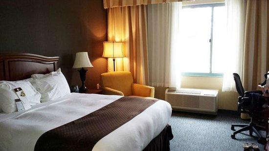 DoubleTree by Hilton Hotel Detroit - Novi: Room 277