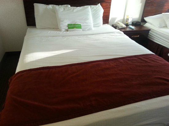 Baymont Inn & Suites Piqua: Standard Queen bed w/ old foam mattress