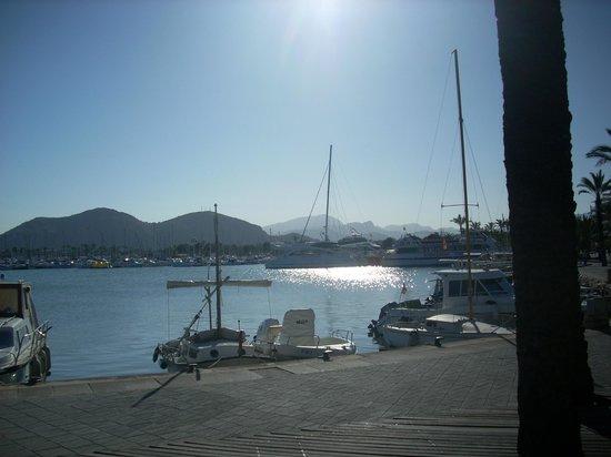 Playa de Alcudia: evening sun