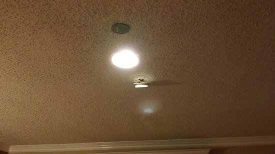 Paradise Inn & Suites : Smoke detector hanging from the ceiling