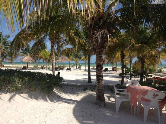 Hotel Villas Delfines: PALYA