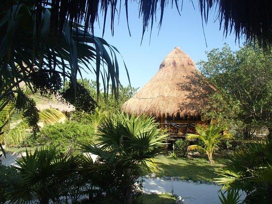 Hotel Villas Delfines: VISTA DESDE EL CUARTO