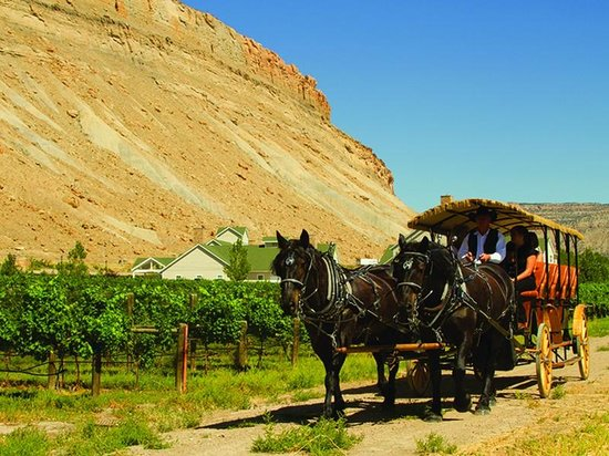 Absolute Prestige Limousine Wine Country Tours