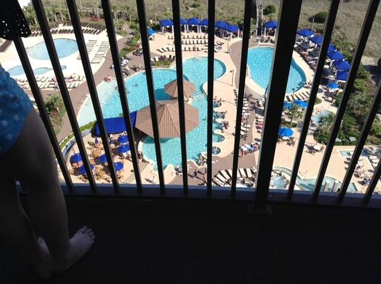 North Beach Plantation: Pool from room but scared of heights :)